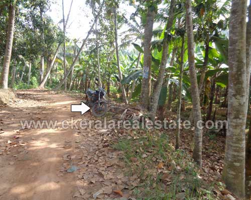 Trivandrum neyyattinkara residential 50 cent land for sale for Land for sale in kerala