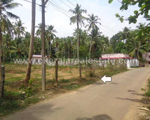 57 cents land for sale at pappanamcode trivandrum kerala for Land for sale in kerala