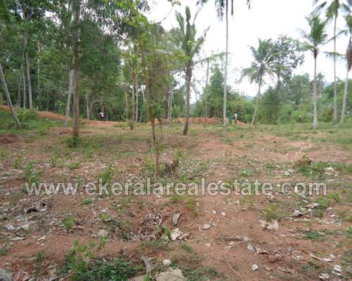 Land for sale at thirumala trivandrum kerala real estate for Land for sale in kerala