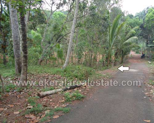 Land plot for sale at korani near attingal trivandrum for Land for sale in kerala